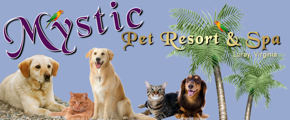 Mystic Pet Resort & Spa Luray VA