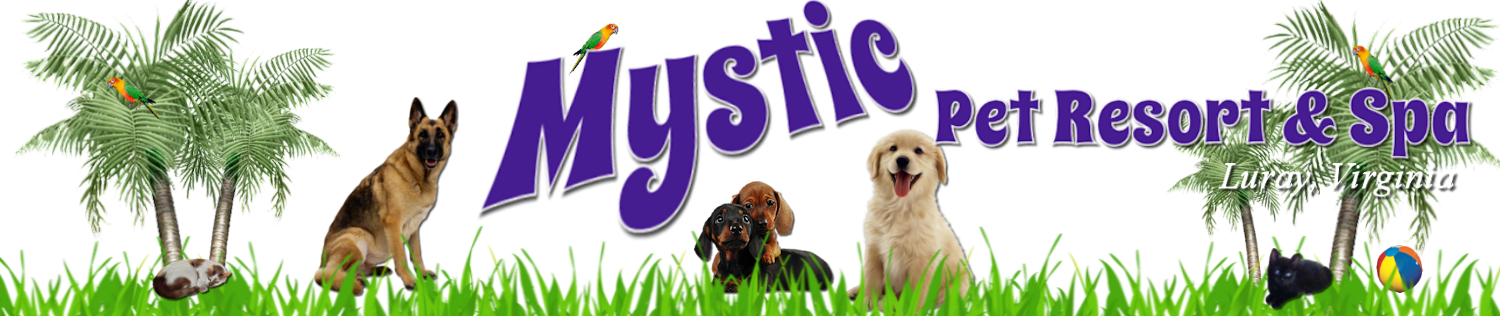 Mystic Pet Resort